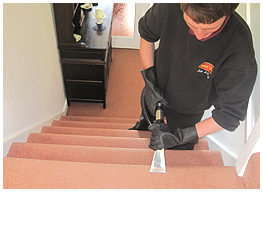 carpet repairs torquay