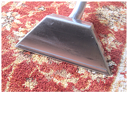 domestic carpet cleaning torquay paignton newton abbot
