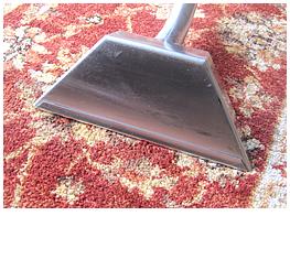 domestic carpet cleaning torquay paignton newton abbot